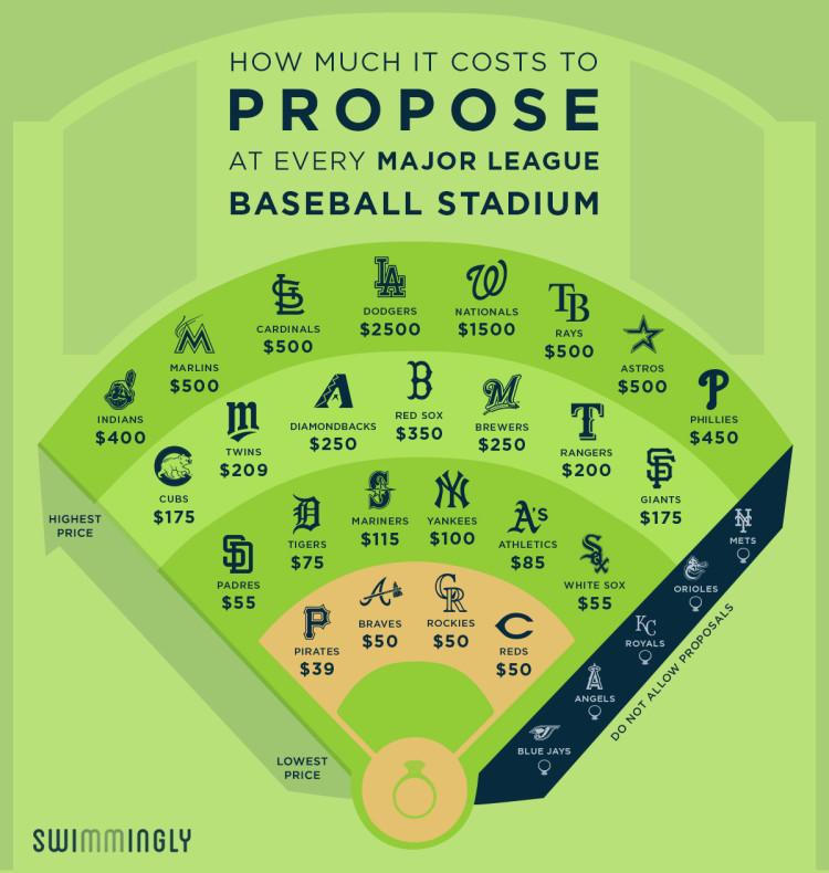 BaseballEngagement_Field_Article_1200px-750x790